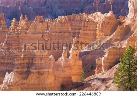 Hoodoos, formed by frost weathering and stream erosion of the river and lake bed sedimentary rocks. National Park Bryce Canyon (Utah) at sunrise - stock photo