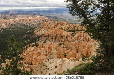 Hoodoos with pine trees at Bryce Canyon National Park in Utah. - stock photo