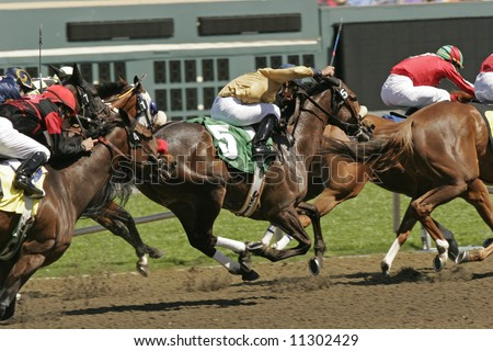 Hooves fly off the ground as a jockey races his thoroughbred to the finish line in a horse race. - stock photo