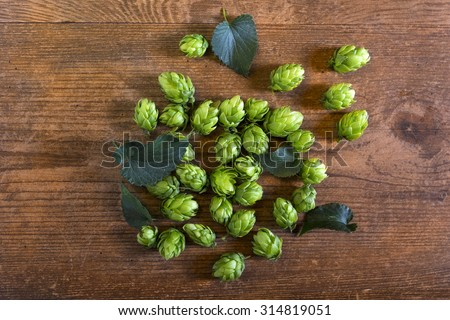 Hop cones on the wooden table. Organic raw ingredients for beer production. - stock photo