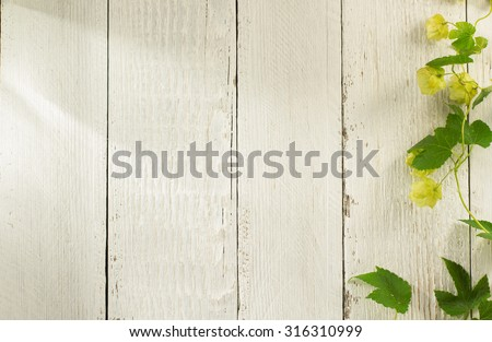 hop cones on wooden background - stock photo
