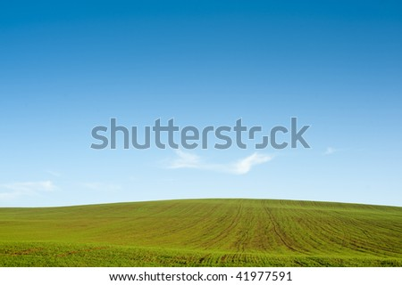 Horizon with green field and blue sky and a soft cloud