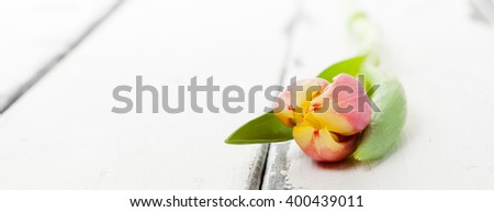 horizontal banner with yellow tulips on white wooden background