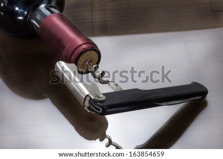 horizontal bottle and corkscrew - stock photo