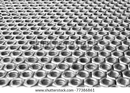 horizontal field to the horizon, arranged in rows of nuts