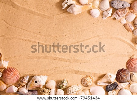 Horizontal frame of sea shells over beach sand.  Makes for a great vacation template. - stock photo