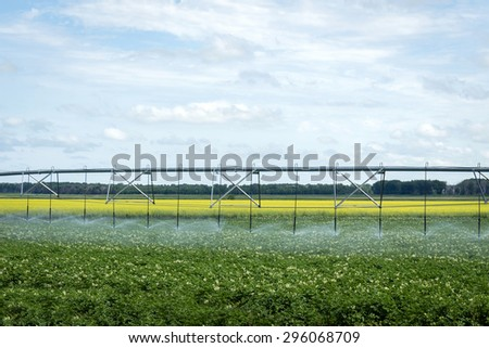 horizontal image of a water irrigation system sitting in the field watering the crop on farm land with a canola filled in the background under a blue cloud filled sky in summer time - stock photo