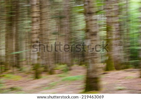 horizontal motion blurred forest - stock photo