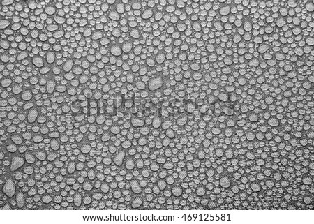 horizontal orientation close up image in black and white of water droplets, with copy space, Black and White Image of Water Droplets