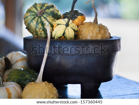 horizontal orientation close up of a variety of colorful gourds in a dark, vintage, wooden bowl with blurred background and copy space / Harvest Gourds provide Seasonal Color - stock photo