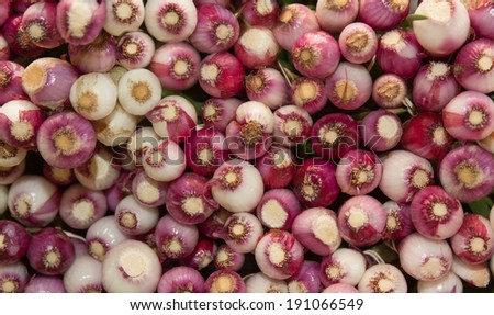 horizontal orientation close up of bunches of brightly colored, small, red onions stacked on top of each other with copy space / Horizontal small Red Onions - stock photo