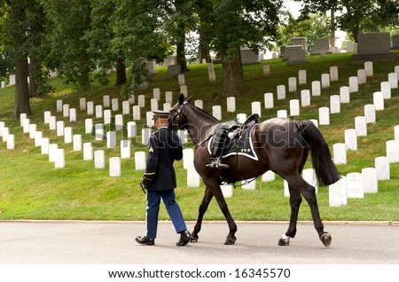 Horizontal photo of riderless horse with boot reversed in stirrup being led in funeral procession at Arlington National Cemetery - stock photo