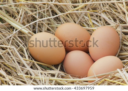 Horizontal photo of several hen eggs which are placed on nice haystack from dried straws and inside wicker basket. Light wooden wall is in background.