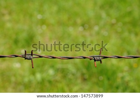 horizontal picture of barbed wire in meadow - stock photo