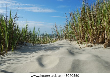 Horizontal Scenic Beach view from sandunes - stock photo