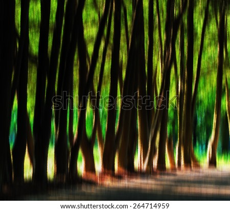 Horizontal vibrant crystal tree alley light leak background backdrop - stock photo