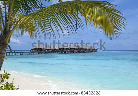 horizontal view of over water villas standing in turquoise ocean. A coconut palm tree is framing the scene.