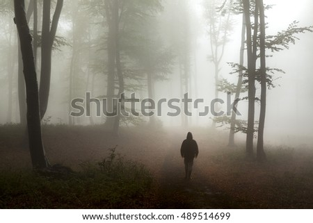 Horror moment in foggy forest. Dark man in silhouette appears on the trail