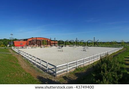 Horse academy - stock photo