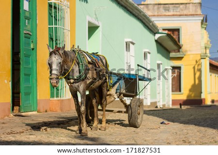 Horse and a cart on a street in Trinidad, Cuba - stock photo