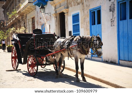Horse and Carriage in Havana Cuba - stock photo