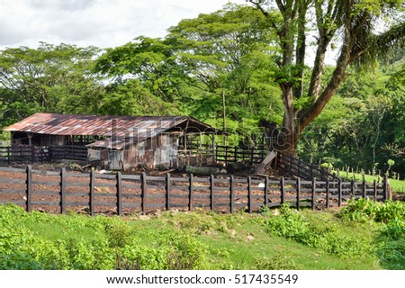 Horse and cow barn near Matagalpa on the way to Pita village, in the northern highlands of Nicaragua