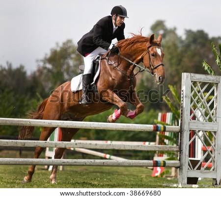 horse and jockey jumping - stock photo