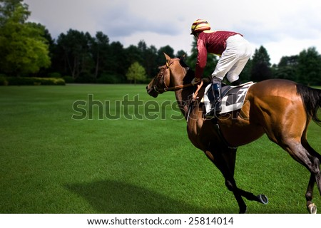 Horse and jockey running through a field at twilight - stock photo