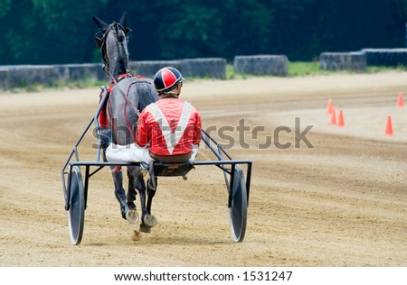 Horse and jockey set out for the first race. - stock photo