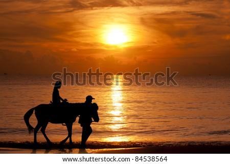 Horse and jockey walking on the beach when sunset - stock photo