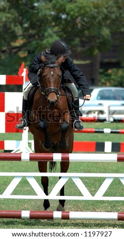 Horse and rider clear a showjumping jump