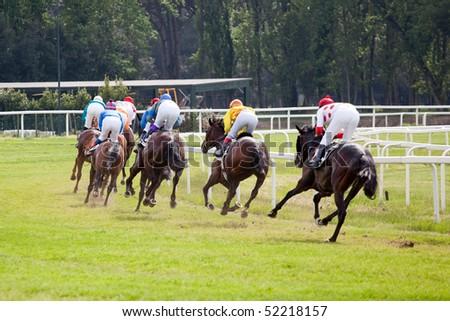 horse at gallop race at hippodrome - stock photo