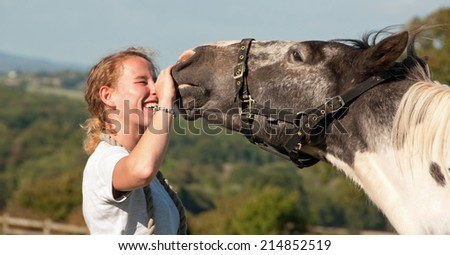 Horse displaying affection towards his owner - stock photo
