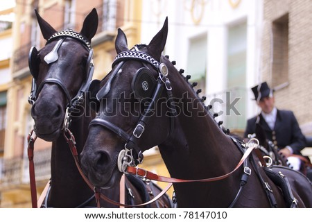 Horse drawn carriage in Seville, during the feria celebration - stock photo