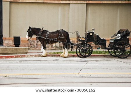 Horse drawn carriage parked on the street waiting for passengers - stock photo