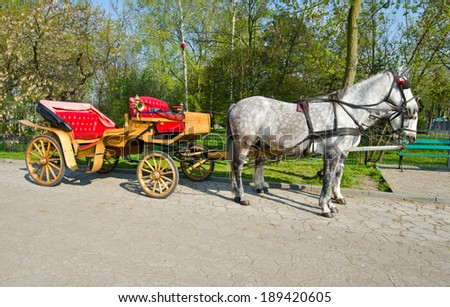 horse-drawn carriage with horses - stock photo