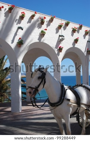 Horse drawn carriages along the Balcony of Europe (Balcon de Europa), Nerja, Costa del Sol, Malaga Province, Andalusia, Spain, Western Europe. - stock photo