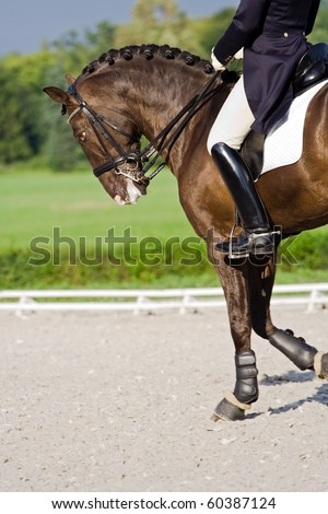 Horse dressage outdoors during stormy weather - stock photo