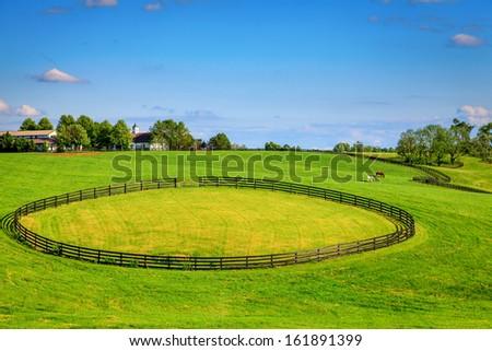 Horse farm with black fences - stock photo