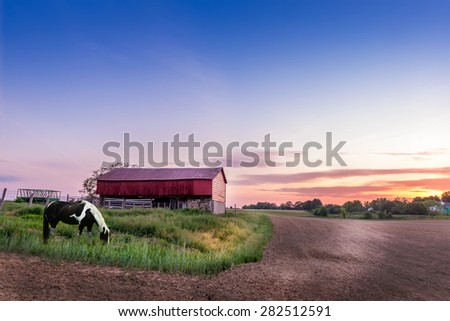 Horse grazing on a Maryland farm at sunset - stock photo