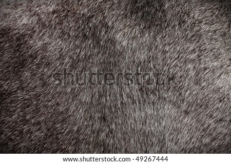 horse hair - close up chestnut color - stock photo