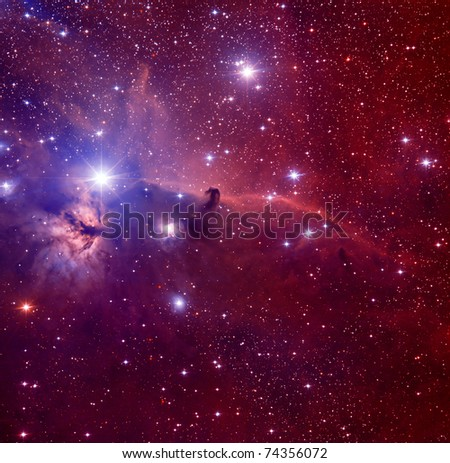 Horse Head nebulae - stock photo