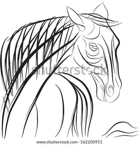Horse head profile with mane and tail, hand drawn sketch composition isolated on white