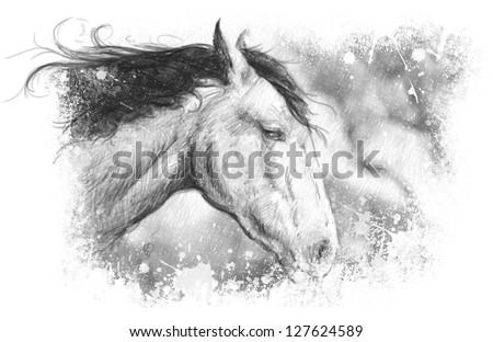 Horse illustration, tattoo art, sketch - stock photo