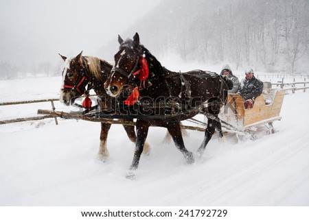Horse pulled sledge in the Transylvanian Alps, Romania - stock photo