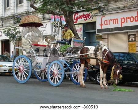 horse pulling a carriage on the street of mumbai, india - stock photo