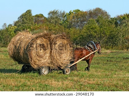 horse pulling a cart with bale hay