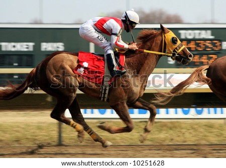 Horse race - stock photo