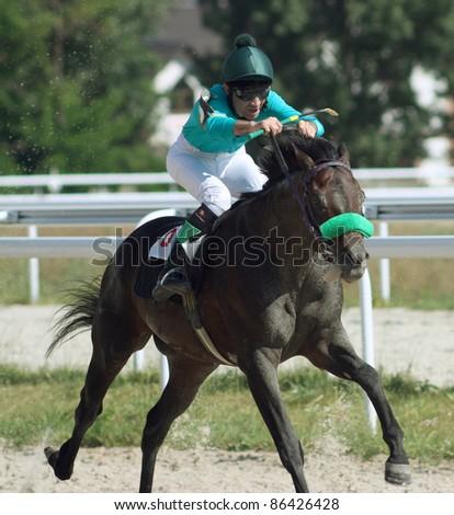 Horse race finish - stock photo