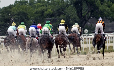 Horse race for the traditional prize Letni in Pyatigorsk,the largest in Russia.
